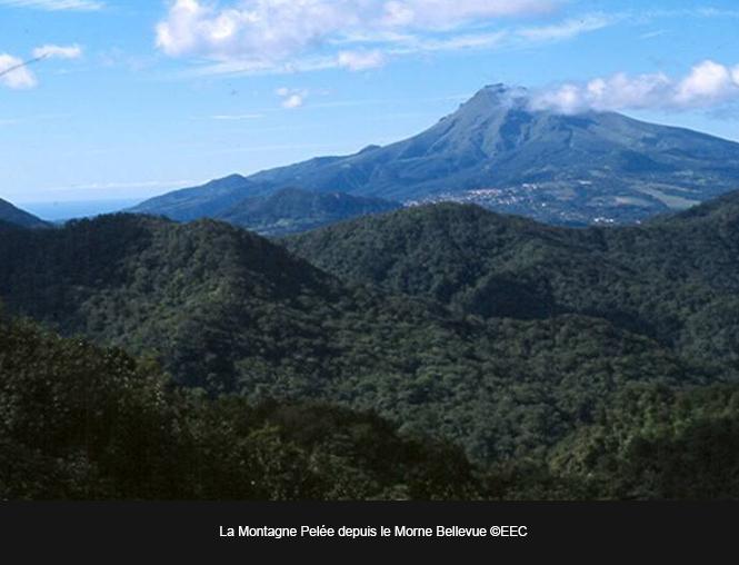 Montagne-Pelee-MB